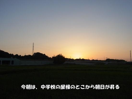 b0149072_17423651.jpg