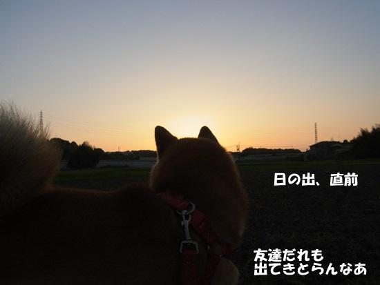 b0149072_17424936.jpg