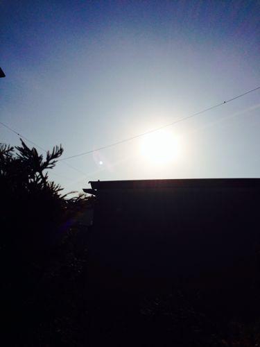 秋晴れ\(^o^)/_f0349583_16244361.jpg