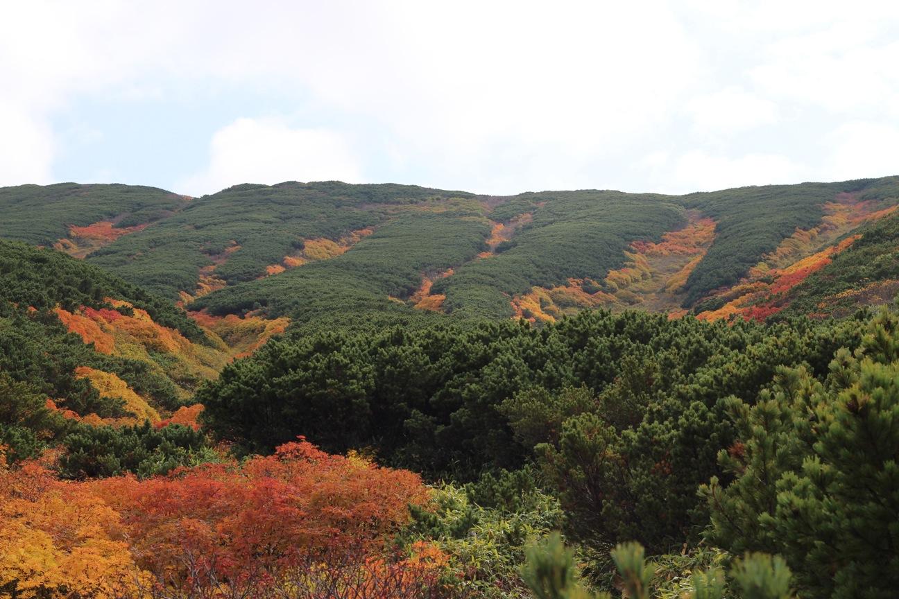三段山の紅葉_f0138096_18231340.jpg