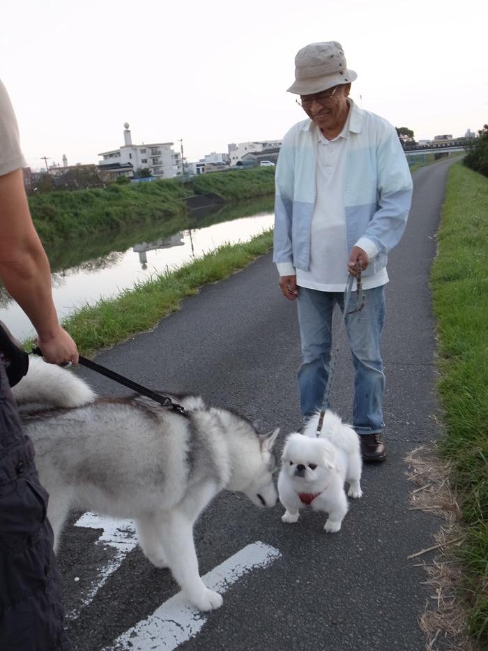 お散歩るんるん♪ そしてインディアンジュエリー(^o^)_c0049299_23181187.jpg