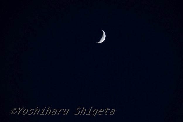 〜Crescent Moon〜_c0152400_17513518.jpg