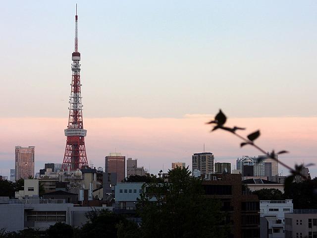 日曜おじ散歩_c0062832_8461488.jpg