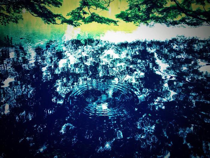 善福寺公園 / iPhone 4s_c0334533_15312893.jpg