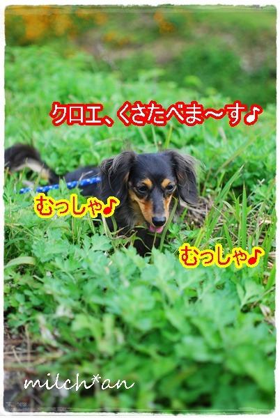 b0115642_20025100.jpg