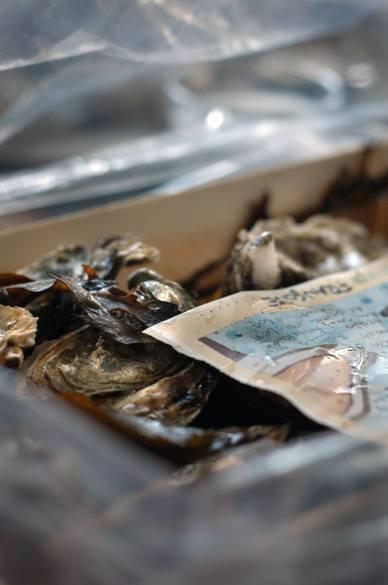 牡蠣&トリュフル&ワイン Oysters & Truffel & Wine_d0047851_335457.jpg