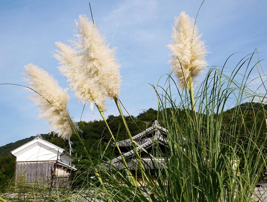 里山の風景_b0093754_15294153.jpg