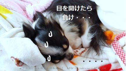 b0112758_2163135.jpg