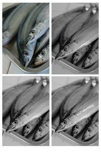 サンマ・さんま・秋刀魚!2014_c0156468_2052898.jpg