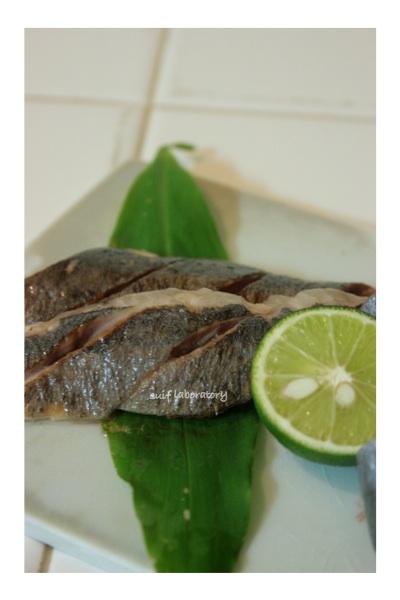 サンマ・さんま・秋刀魚!2014_c0156468_20584374.jpg