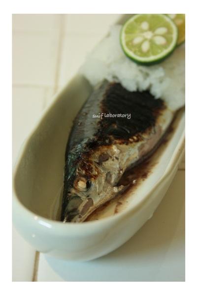 サンマ・さんま・秋刀魚!2014_c0156468_20591485.jpg