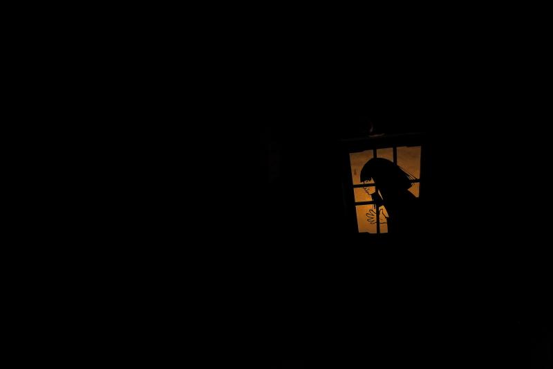 「遠野物語23(幽霊と出逢える期間)」_f0075075_5162419.jpg