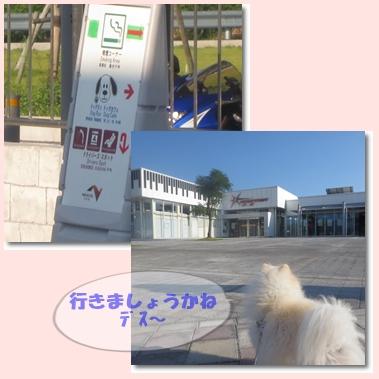 b0167519_1492832.jpg