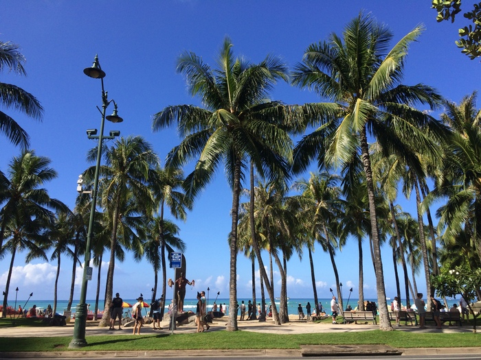 2014 9月 ハワイ (10)  驚愕のテイクアウト@Me\'s B-B-Q でビーチランチ_f0062122_16304979.jpg