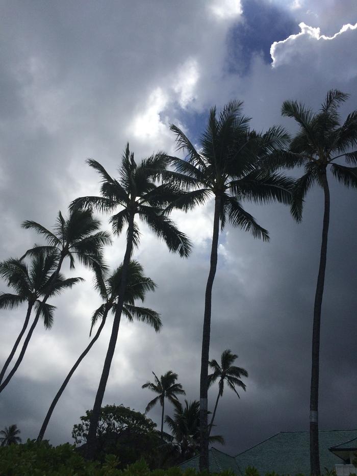 2014 9月 ハワイ (10)  驚愕のテイクアウト@Me\'s B-B-Q でビーチランチ_f0062122_16354495.jpg