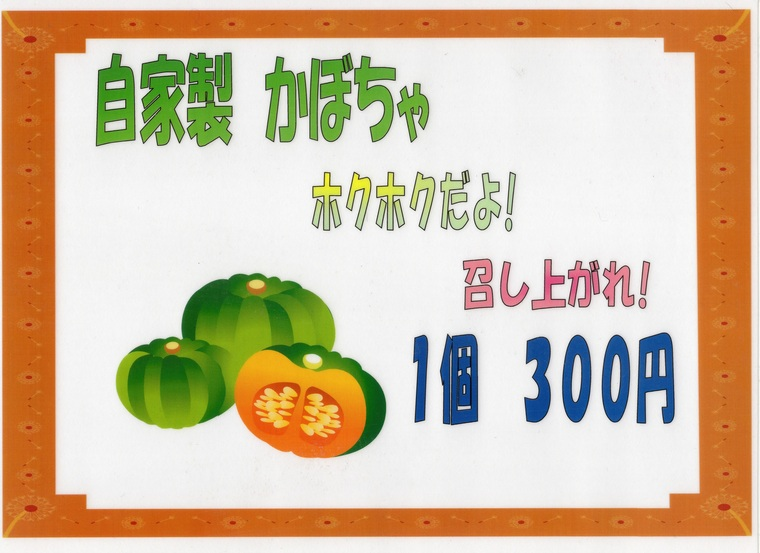 自家農園の野菜_b0185375_8461048.jpg