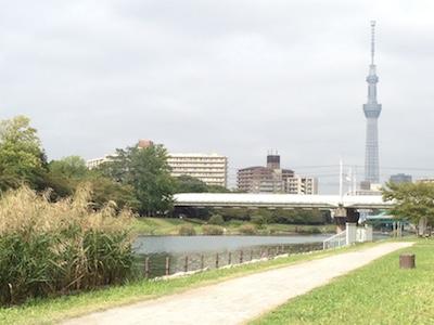 東京下町 〜小さな秋、発見!〜_d0154102_9474691.jpg