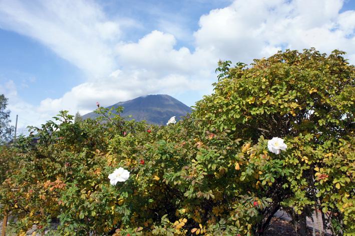 活火山_f0160407_542471.jpg