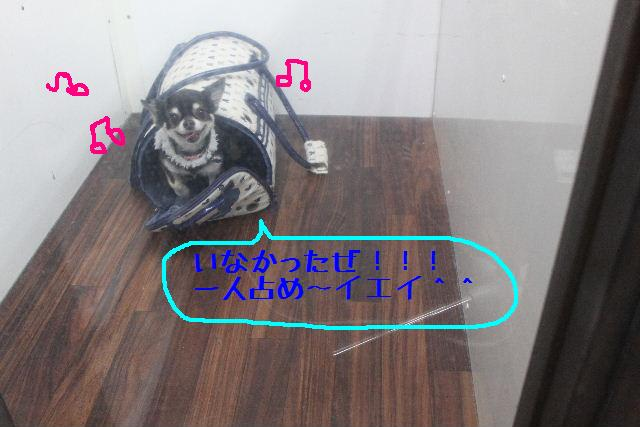b0130018_9474881.jpg