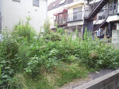 【写真】四谷〜荒木町〜坂町界隈 3_b0136144_512786.jpg