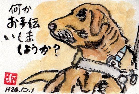 盲導犬のポスター_e0232277_1120880.jpg