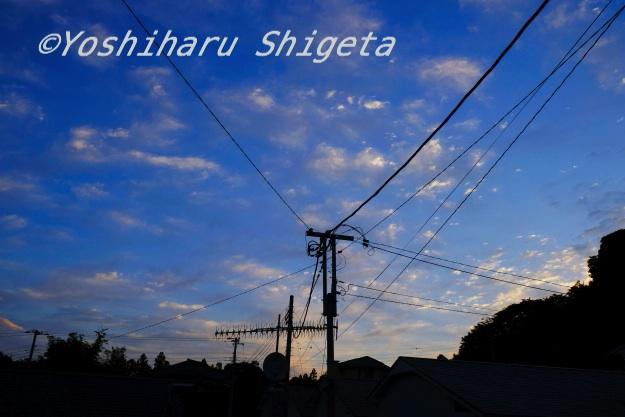 〜Morning〜_c0152400_617198.jpg
