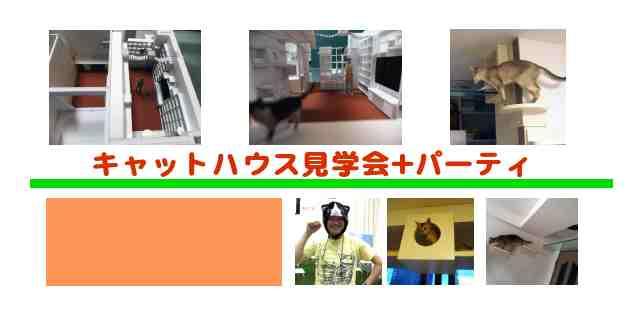 c0158907_1055462.jpg