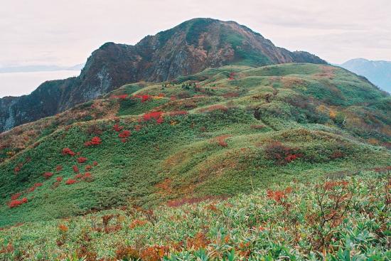 頸城山塊の西端にそびえる個性的な名峰_a0113718_1713561.jpg