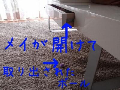 d0170555_140784.jpg