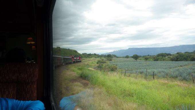 Jose Cuervo Express,Premium Experience ①_c0325278_02303267.jpg