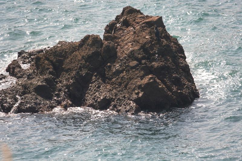 鴎ヶ鼻(かもめがはな)弁天岩、日本海フィッシャーマンズケープ恋人岬_d0133581_1591758.jpg