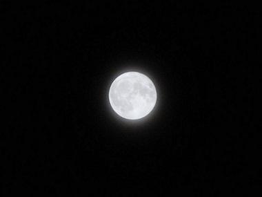 今夜は十三夜(中平)_f0354314_18485620.jpg