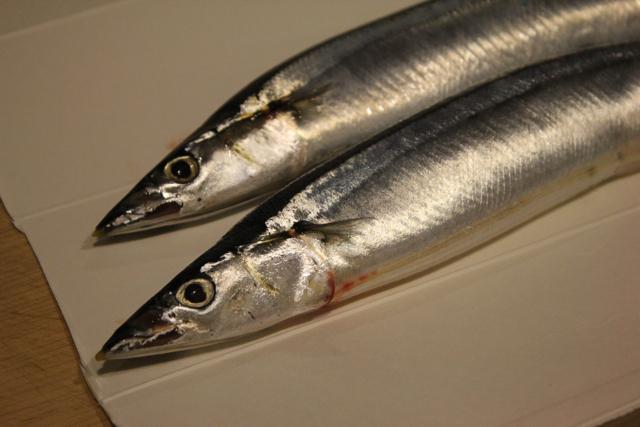 秋刀魚。_f0348831_23244372.jpg