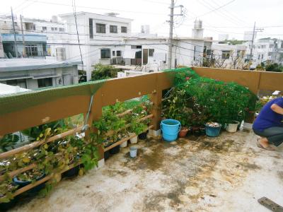 台風18号対策_c0180460_23515397.jpg