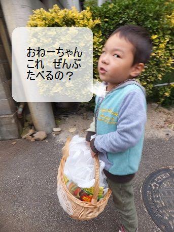 f0179203_1452984.jpg