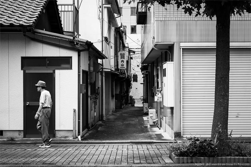 郷 里 、徳 山 に て … #12_e0117517_2391348.jpg
