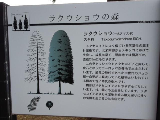 でっかいど~北海道~じゃなくて_a0258233_2347043.jpg