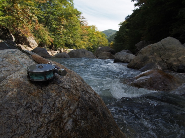2014年渓流最終釣行~_f0064359_13193156.jpg