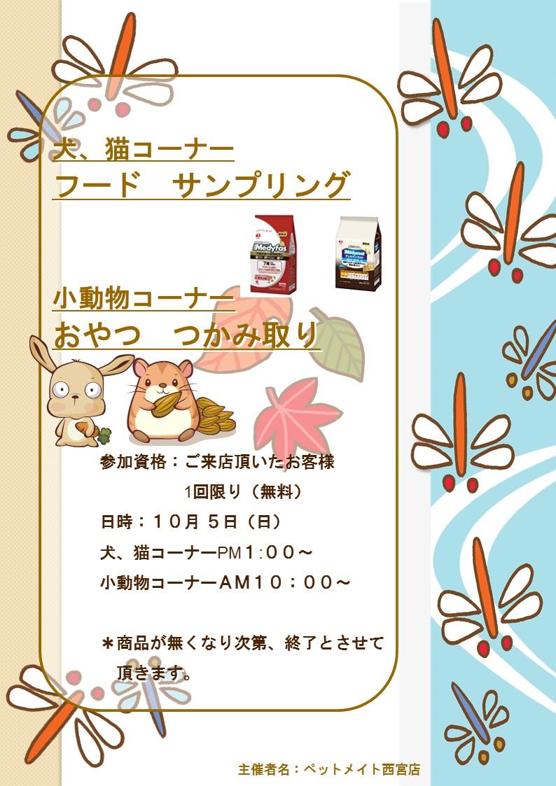141005 10月のイベント告知_e0181866_843653.jpg