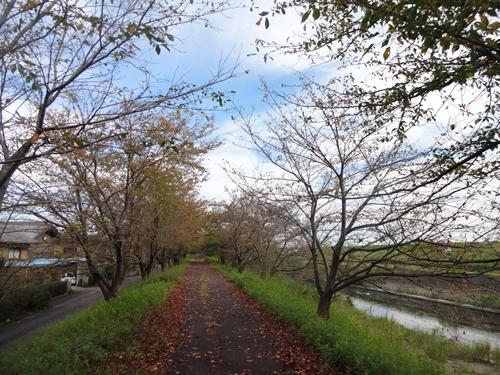岐阜・愛知城巡り&BOSTON名古屋公演_e0201281_20433021.jpg