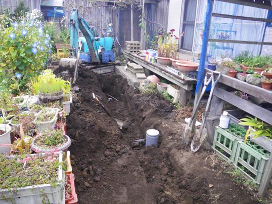 庭もパソコンも、ただいま工事中・・・って・・^^ (追記あり)_a0136293_1539514.jpg