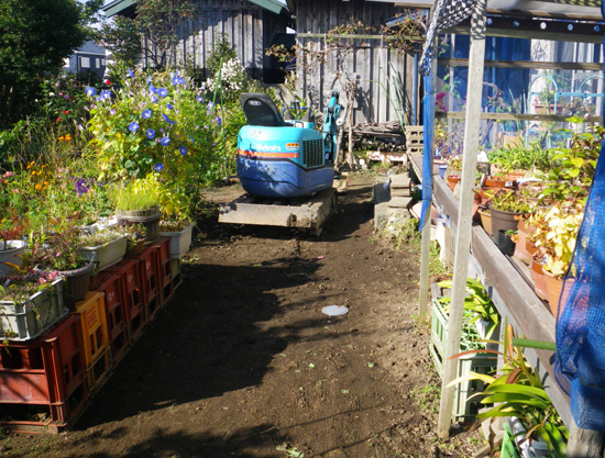 庭もパソコンも、ただいま工事中・・・って・・^^ (追記あり)_a0136293_15495765.jpg