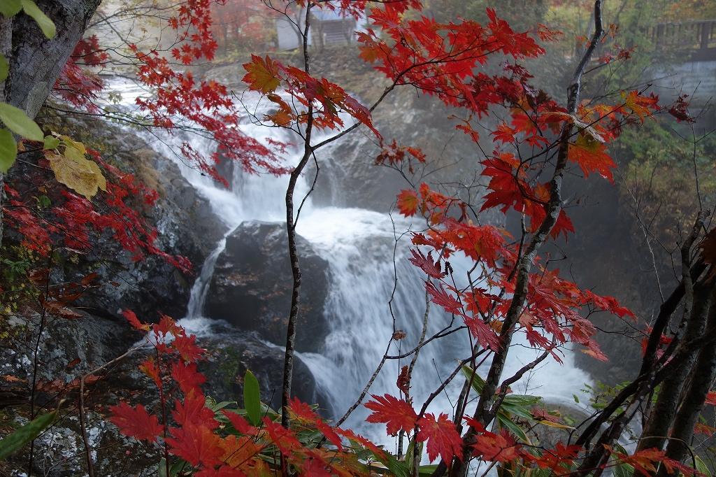 三階滝、10月5日_f0138096_21104854.jpg