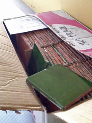 brownie(名古屋市瑞穂区マンション)_a0278306_1024992.jpg