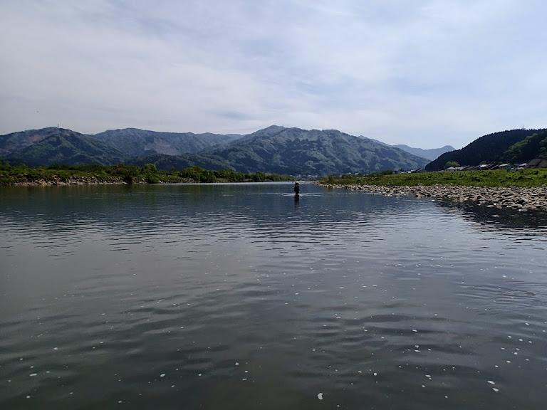 川 九頭竜