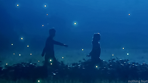 firefly・・・アイアンマン 5話まで_a0192209_22361932.png