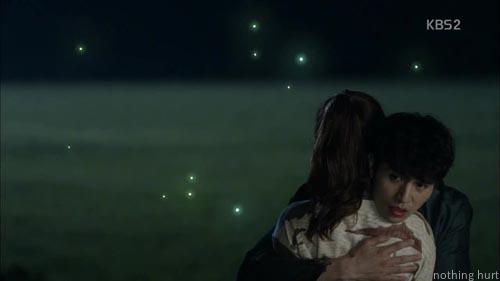 firefly・・・アイアンマン 5話まで_a0192209_22361951.jpg