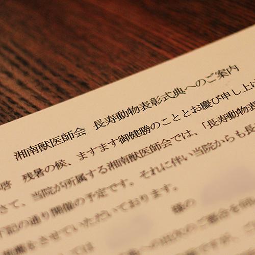 b0020613_19345024.jpg