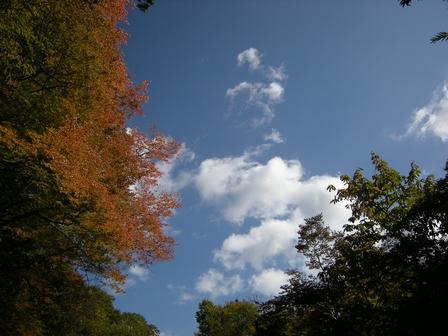 櫃取湿原は秋の終わり。_b0206037_20192242.jpg