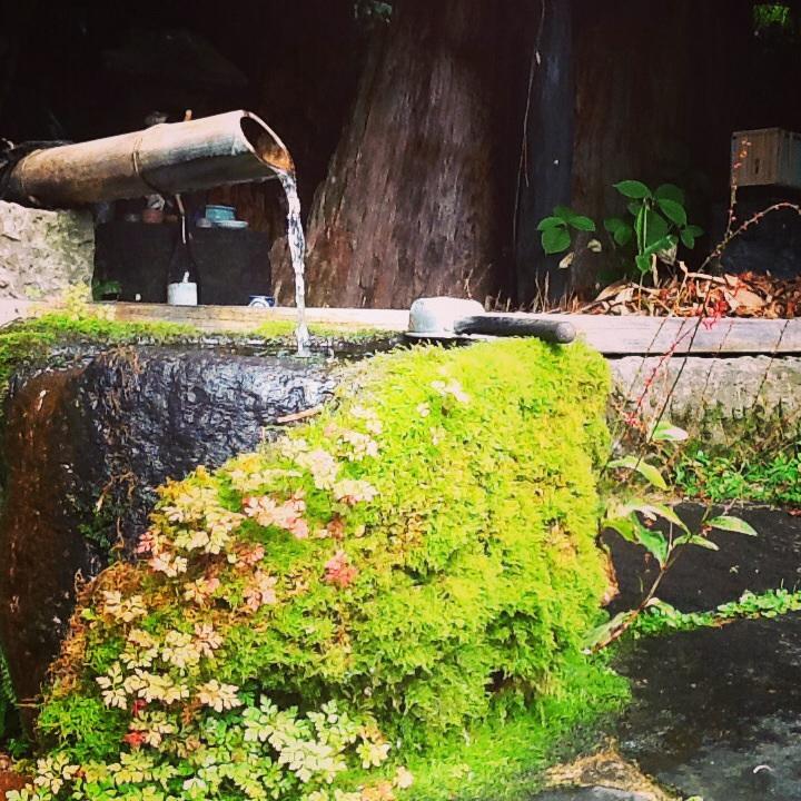 黒川温泉へ。_b0125443_15522786.jpg